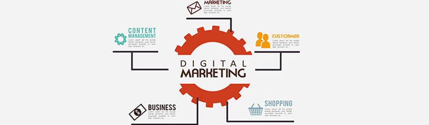 Digital Marketing Live Training